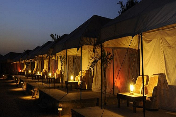 Tent Stay Ranthambore