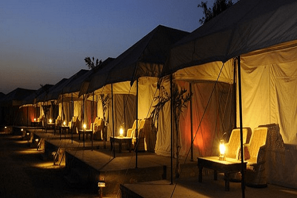 Tent Stay Ranthambore